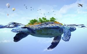 2050_turtle