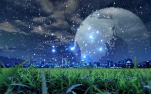grass-night-scene-wallpapers_13868_1920x1200